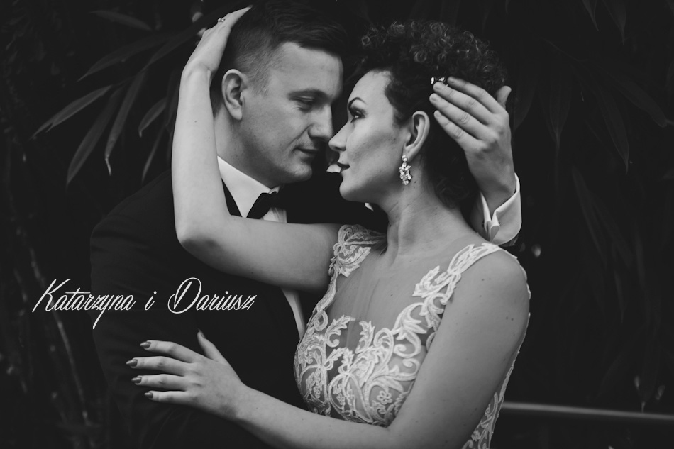zdjęcie tytułowe Katarzyna i Dariusz - ślub Górzykowo