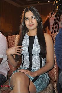 Catherine Tresa Pos at Iddarammayilatho Platinum Disc Function  0015.jpg