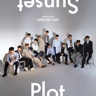 Seventeen - DIRECTOR'S CUT' Albümü