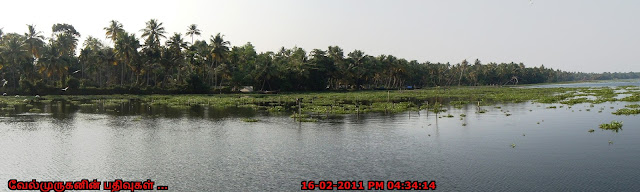 Alappuzha Backwater Tours