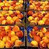 Βλαχοκερασιά Αρκαδίας:Δωρεάν Διανομή Φρούτων
