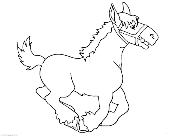 Baby Horse Coloring Pages How Draw Cute Baby Animals Free Pictures Images