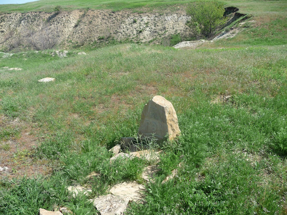 Олексієво-Дружківка. Кладовище домашніх тварин