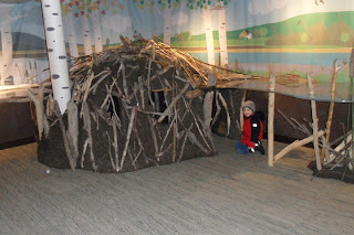 Inside a beaver lodge - photo#54