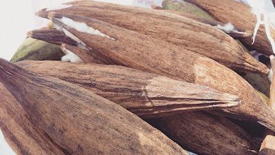 kekabu asli, kekabu asli untuk buat bantal empuk, bantal empuk guna buah kabu, pokok kabu, buah kabu
