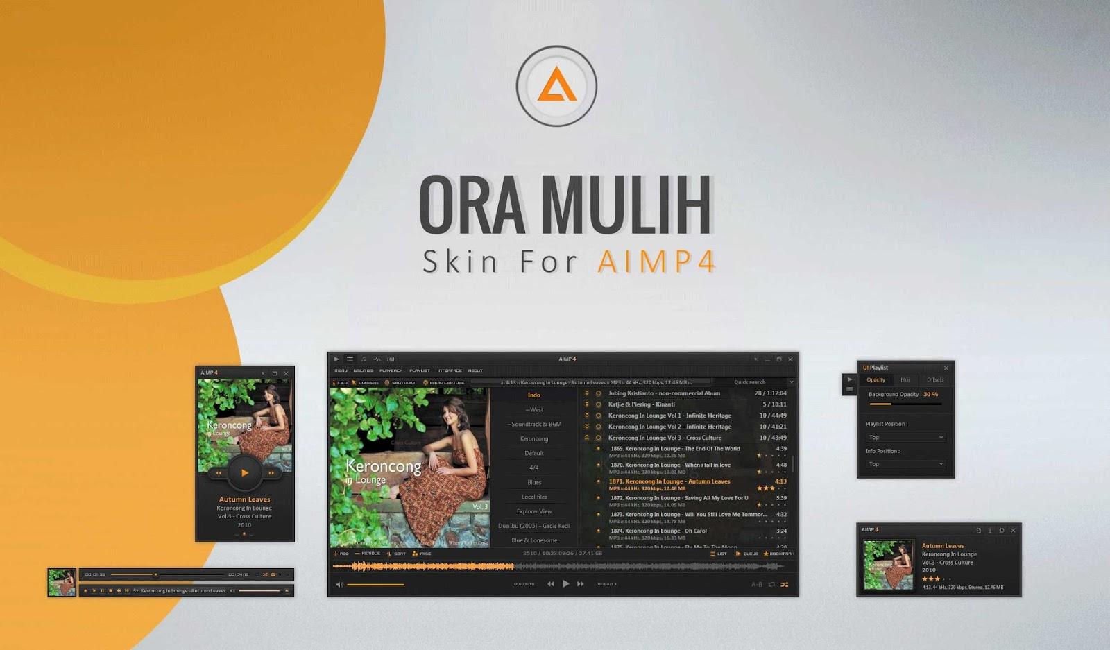 إستمتع بتحميل أجمل إضافات برنامج AIMP مجموعة رائعة من أفضل ال Skins وال Plugins المجانية