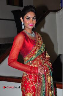 Model Sharon Fernandes Stills in Red Saree at Trendz Exhibition Launch  0045.JPG