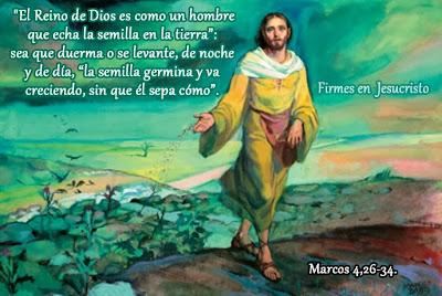 Resultado de imagen de El Reino de Dios es como un hombre que echa el grano (...y)  la tierra da el fruto por sí misma»