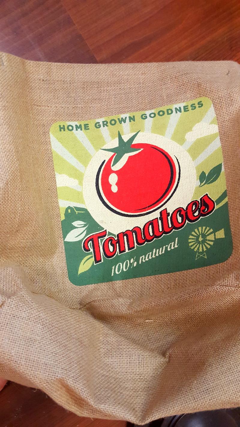 Farmhouse Tomato Stake Lamp