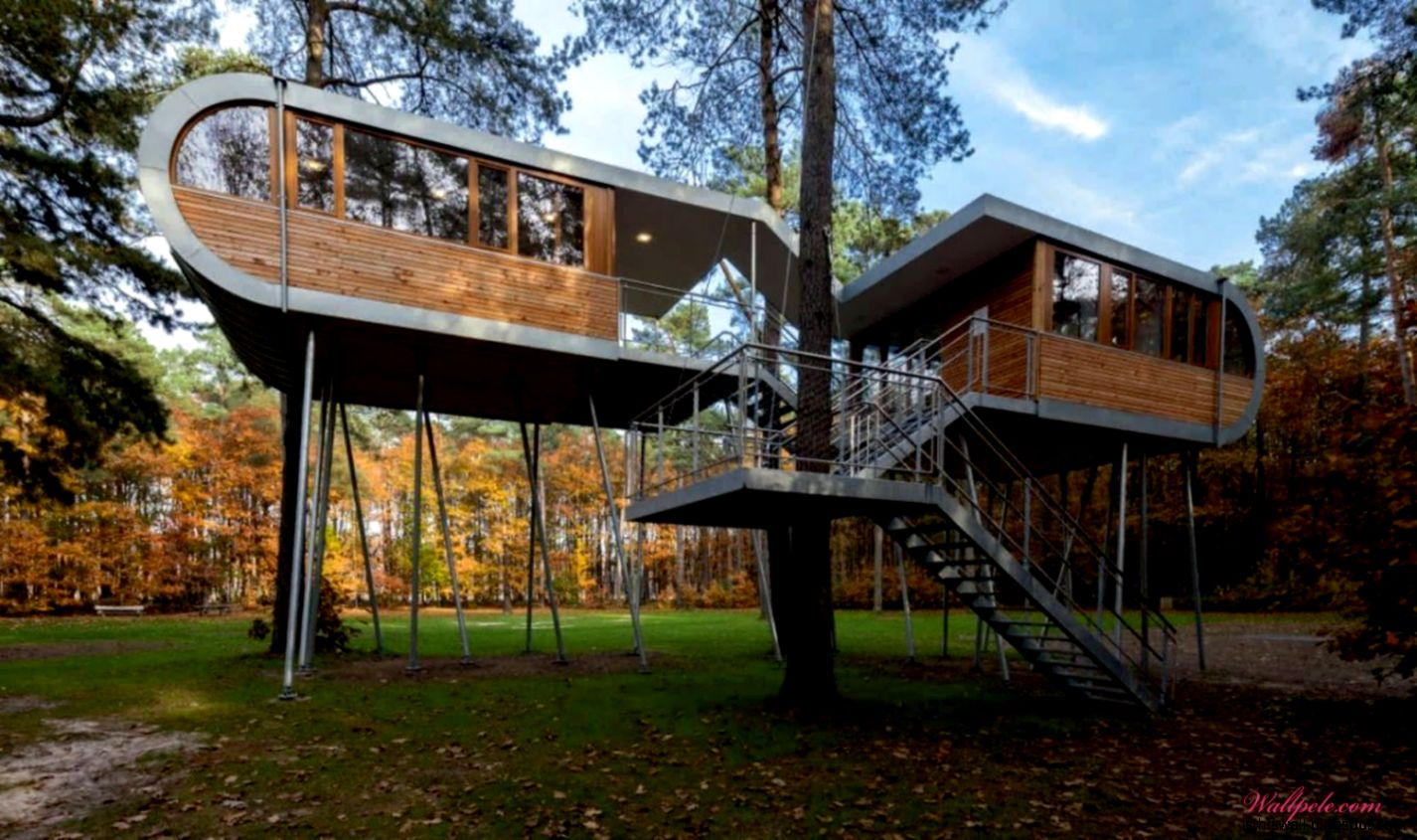 Modern Tree House Design   This Wallpapers