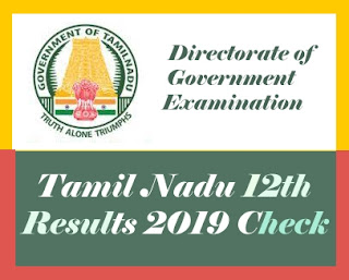 Tamil Nadu HSC Results 2019, TN HSC Results 2019, Tamil Nadu 12th Results 2019, TN 12th Results 2019