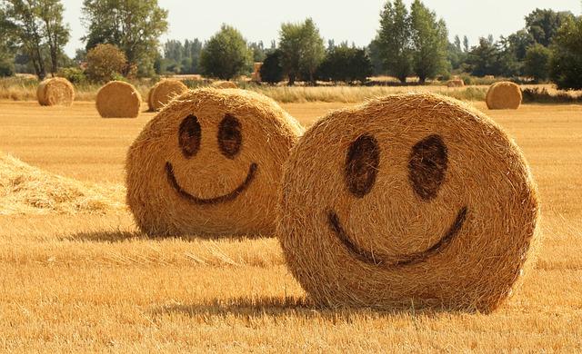 Fericirea este o alegere de Cristina G.