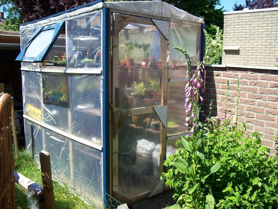 Backyard Greenhouse Art And Home Designs