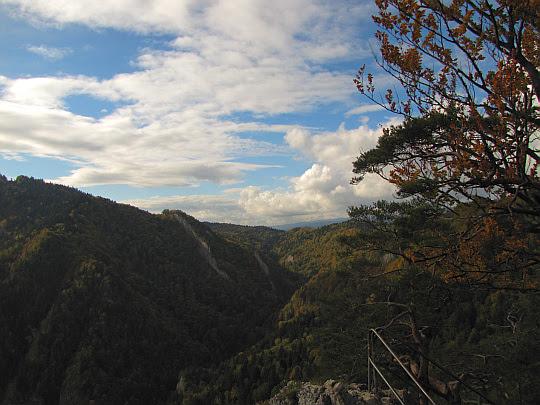 Widok na dolinę Potoku Pienińskiego.
