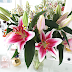BLOSSOMING GIFTS | FLOWER DELIVERIES TO YOUR DOOR