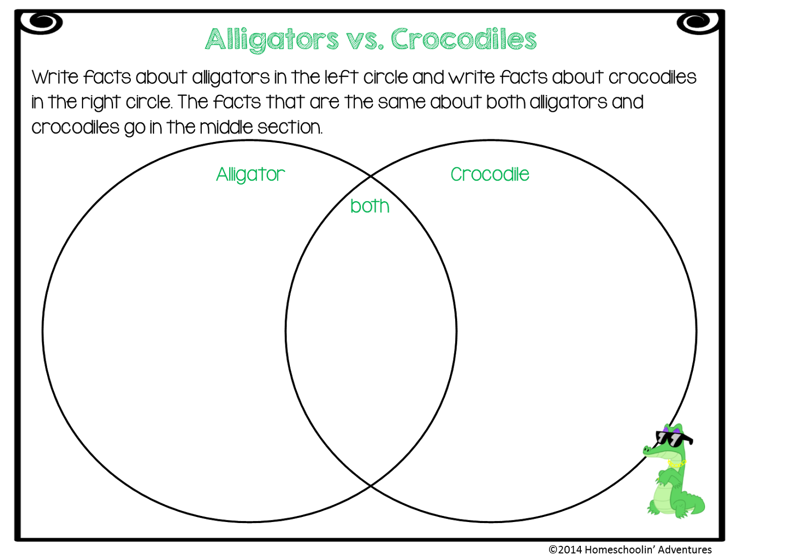 Alligator Food Chain Diagram How To Make Sun Path Crocodile Related Keywords