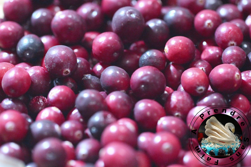 Salade aux cranberries