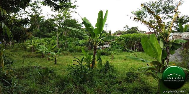 Tanah Strategis dalam Komplek Pemda Sleman