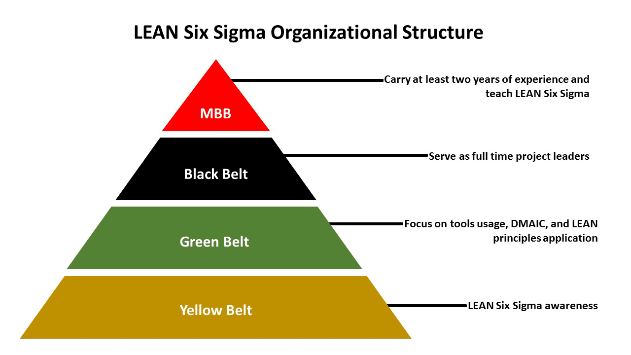 How To Become A Lean Six Sigma Organization Process Central
