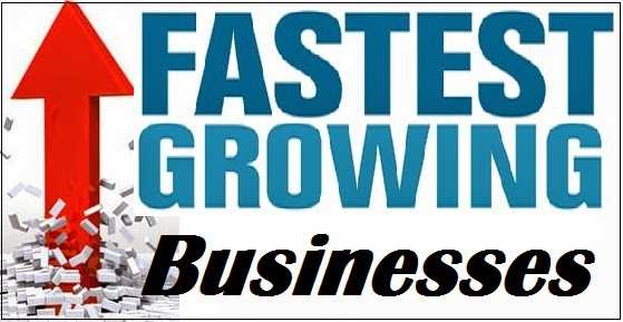 fast growing businesses