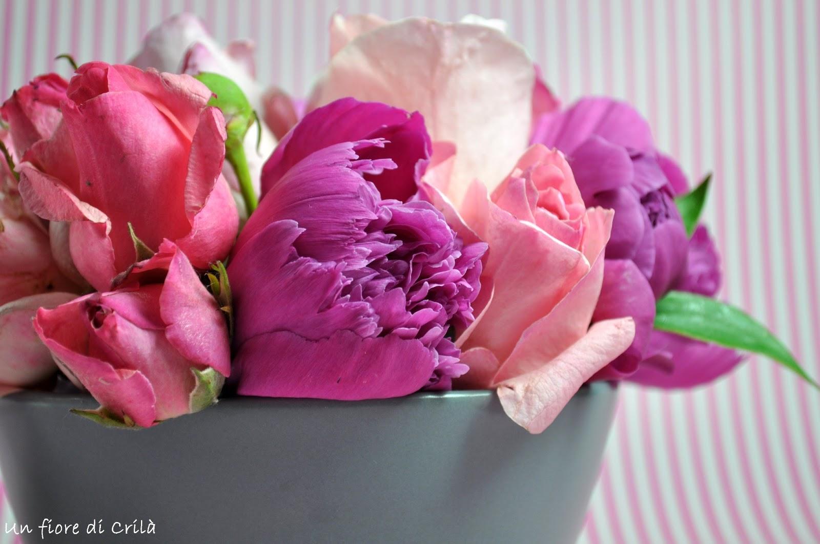 Fiori Del Mese Di Giugno un fiore di crilà: rose di giugno