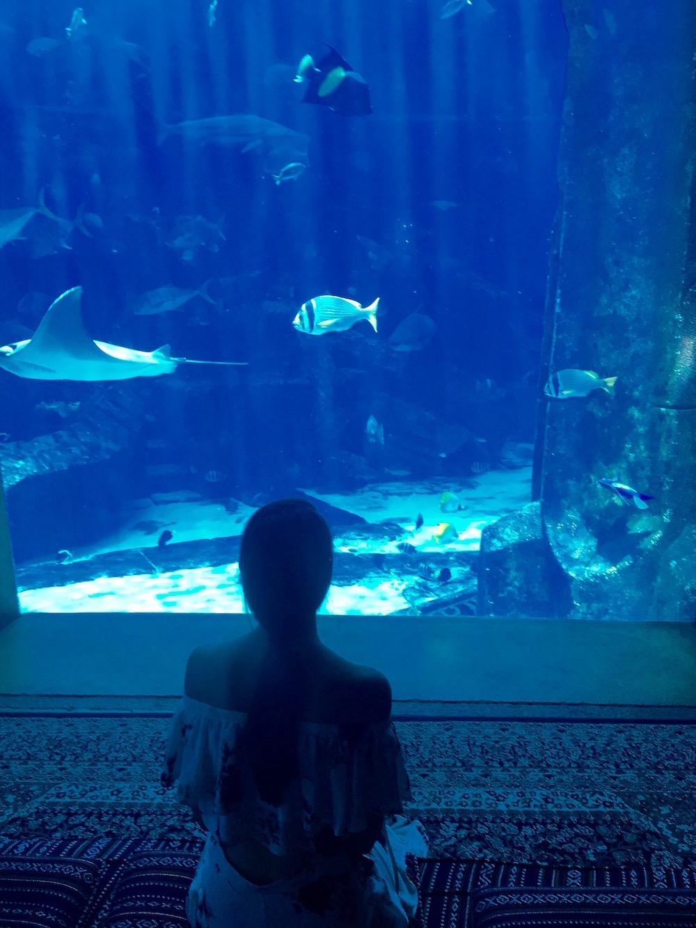 peexo travel blogger dubai aquarium