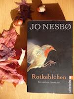 http://www.ullsteinbuchverlage.de/nc/buch/details/rotkehlchen-9783548258850.html