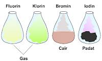 identifikasi unsur halogen