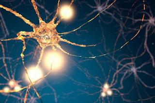 Formula obat sederhana meregenerasi sel-sel otak