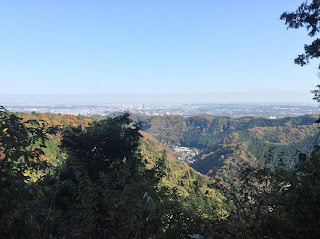Mount Takao fall