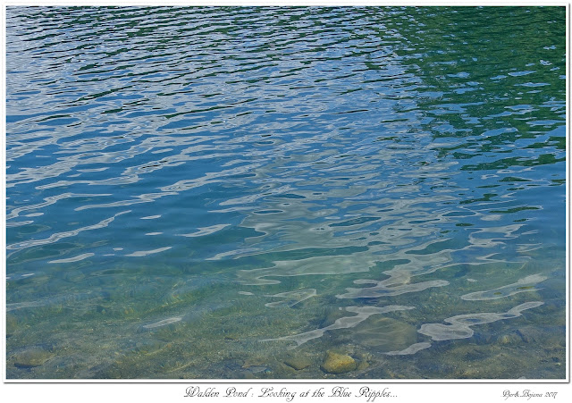 Walden Pond: Looking at the Blue Ripples...
