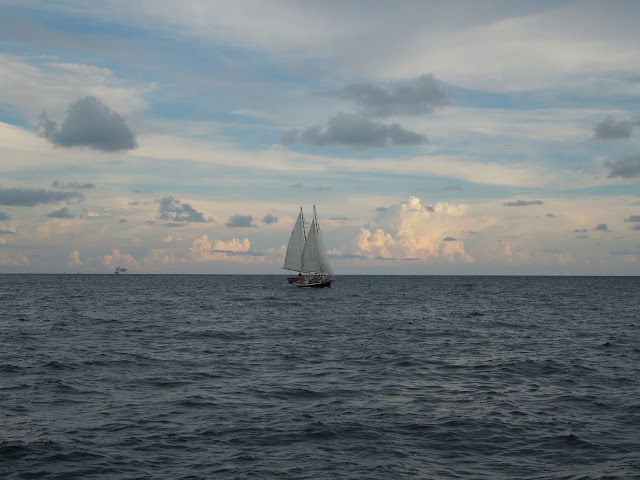 sailboat and cruise ship