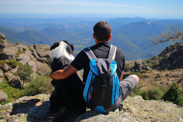 A man and his Australian Shepherd dog sit at a viewpoint