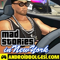 Mad Stories in New York Hile