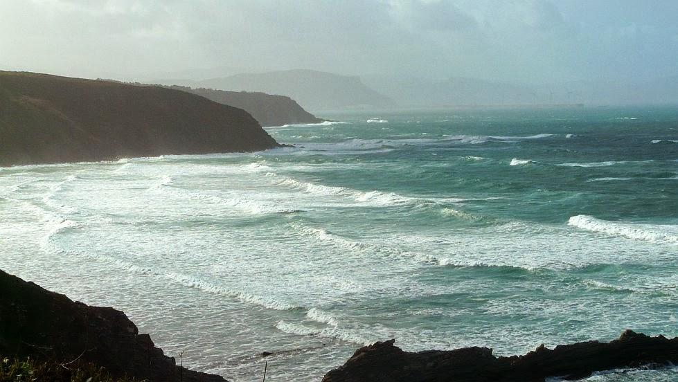 olas sobre la playa de la salvaje