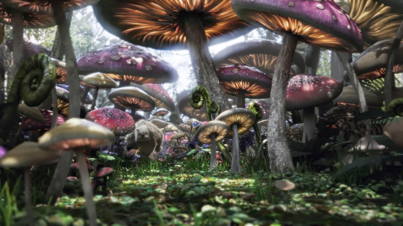 Best Cartoon 4 U Alice In Wonderland Hd Wallpaper