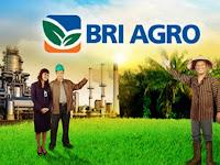 PT Bank Rakyat Indonesia Agroniaga Tbk - Recruitment For Officer Development Program BRI Group July 2017