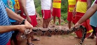 Homem é atacado por cobra quando salvava menina de afogamento em rio na Paraíba