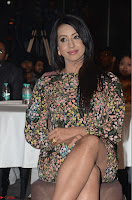 Sanjjanaa Galrani Rogue Movie Audio Launch 013.JPG