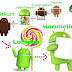 Cara Upgrade OS Android ke Versi Terbaru Dalam Waktu 5 Menit