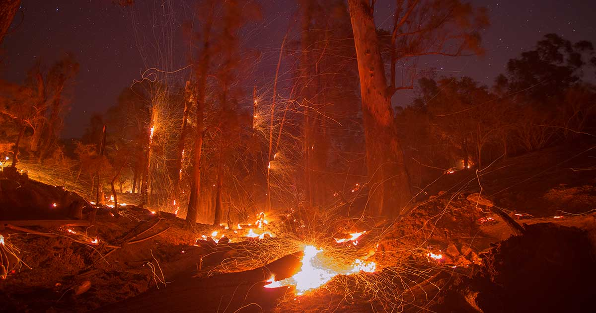 California's 2017 Wildfire Season