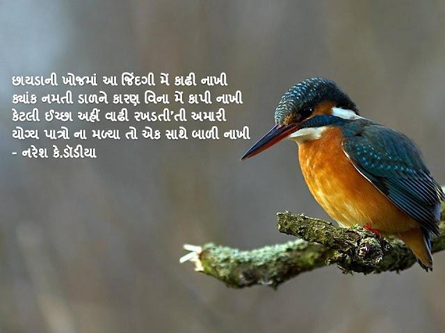 छायडानी खोजमां आ जिंदगी में काढी नाखी Gujarati Muktak By Naresh K. Dodia