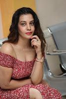 Diksha Panth in a Deep neck Short dress at Maya Mall pre release function ~ Celebrities Exclusive Galleries 128.JPG