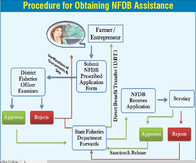 ADVANTAGES AND DISADVANTAGES OF BIOFLOC TECHNOLOGY ~ FISH FARMING