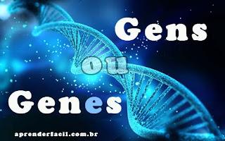 Gens ou genes? Qual o correto?