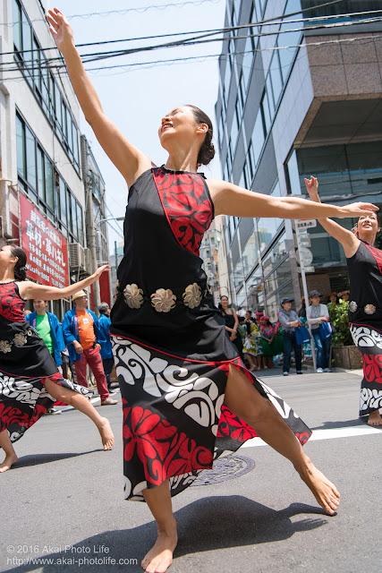 マロニエ祭り、カハレフラ&タヒチスタジオの写真 20