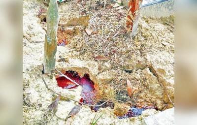 Heboh!!!  Kuburan berdarah di balikpapan ramai jadi tontonan warga