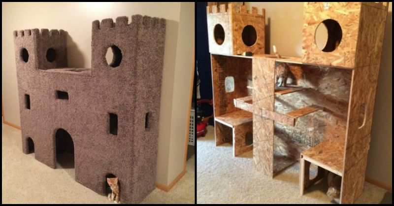 This Ultimate DIY Cat Castle is a Great Way to Keep Our Indoor Cats Busy