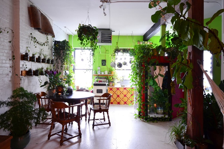 Indoor Garden Apartment Gypsy yaya indoor jungle secret garden apartment in brooklyn photos via apartment workwithnaturefo