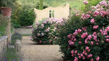 Los jardines de Prieuré de la Tuiliere en la Provenza